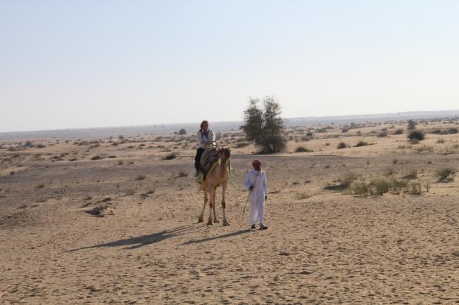 bab al shams 149