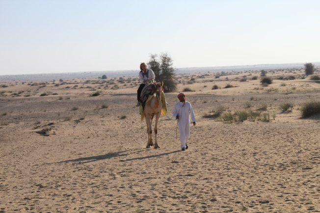 bab al shams 150