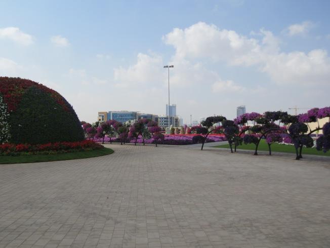 polo and garden 204