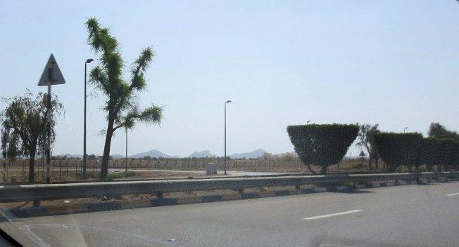 Al Ain Zoo 008
