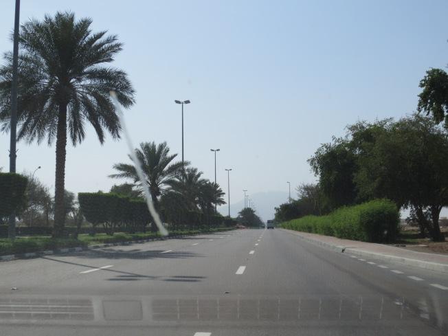 Al Ain Zoo 009