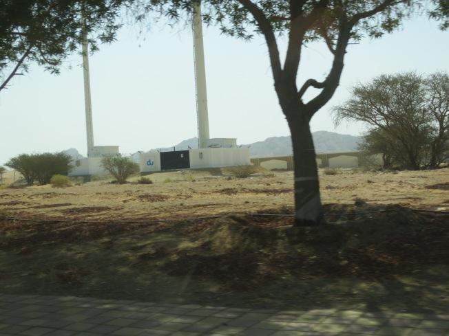 Al Ain Zoo 010