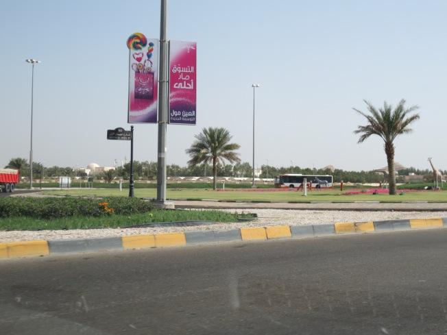 Al Ain Zoo 011