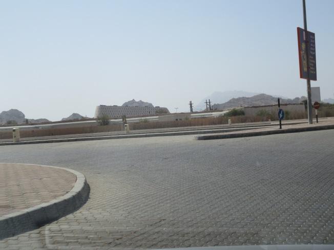 Al Ain Zoo 013