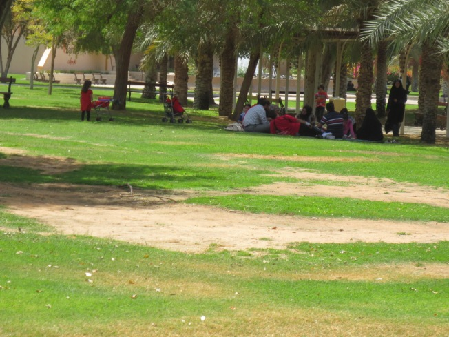 Al Ain Zoo 097