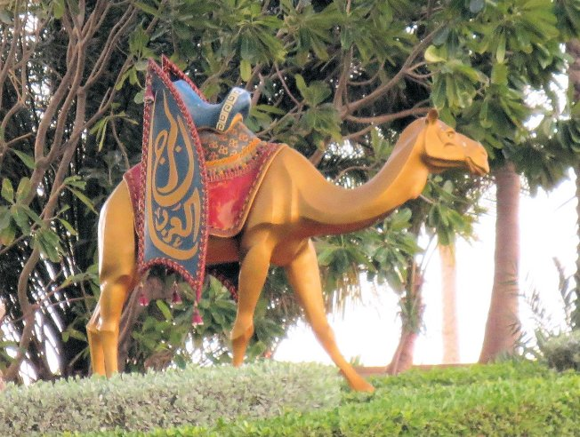 Much closer view of the cute camel tucked back off to the side of the resort.