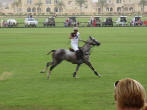Brunch Polo Sandstorm 038