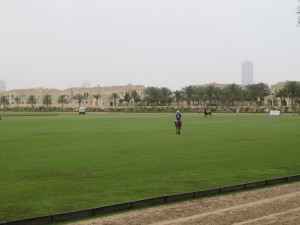 Brunch Polo Sandstorm 039